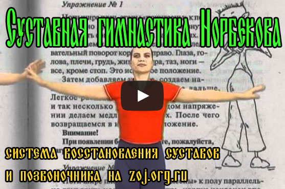нарбеков суставная гимнастика книга скачать бесплатно
